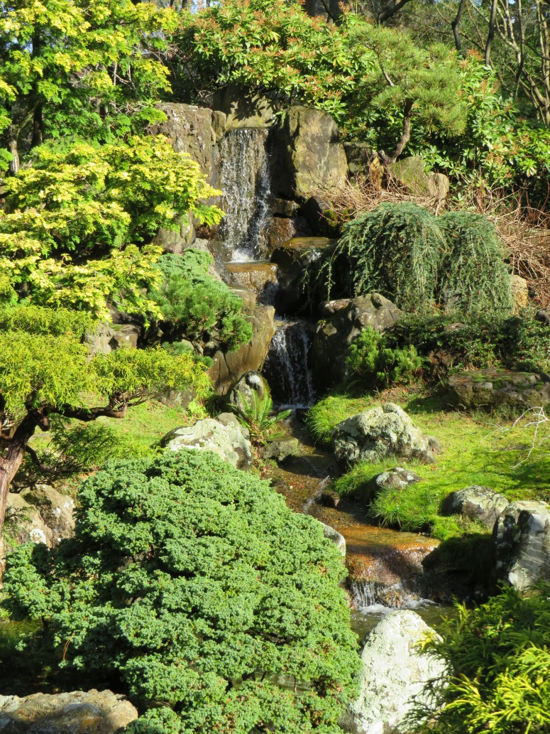 Photo japanese tea garden in san francisco hit the road for Garden and its importance